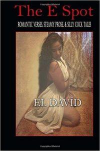 SWNY El David E Spot Romantic Verses, Steamy Prose, & Silly Cock Tales Book Cover