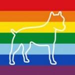 3 Legged Dog Logo