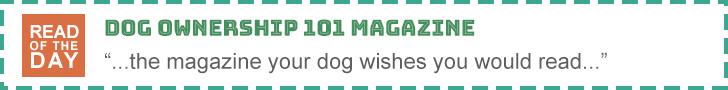 kiosk.dogownership101.com