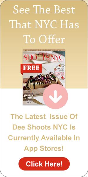 magazine.deeshootsnyc.com