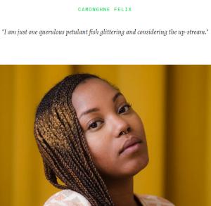 Poets_ Settlement_Camonghne_Felix_website_image
